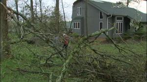 Monroe County Storm Damage